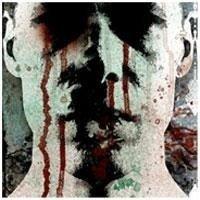 AWAKEN DEMONS The Mirror LP