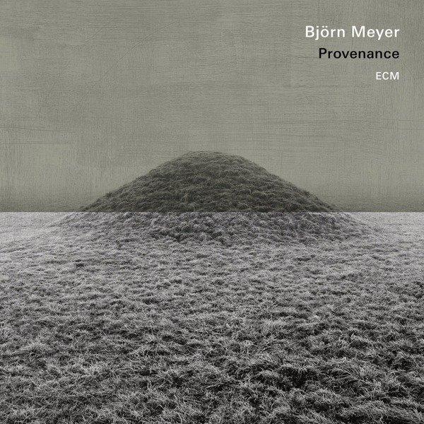 BJORN MEYER Provenance LP
