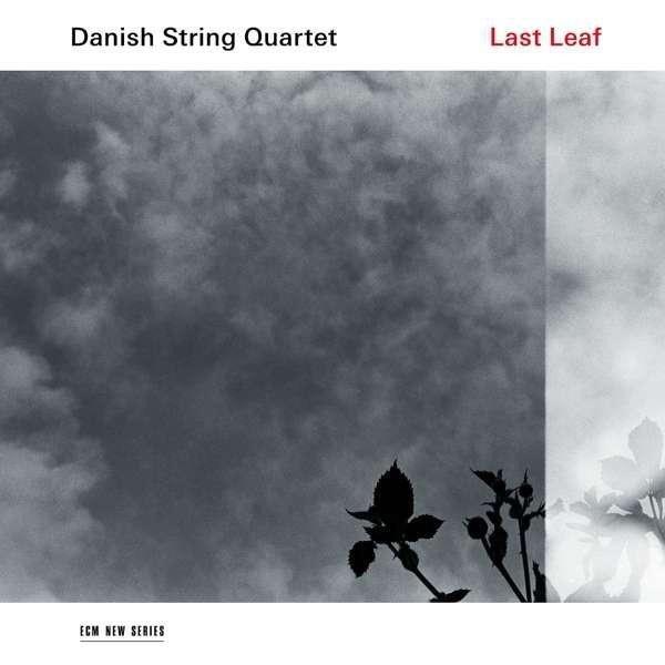 DANISH STRING QUARTET Last Leaf LP